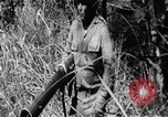 Image of Bay of Pigs invasion Bay of Pigs Cuba, 1961, second 6 stock footage video 65675036876