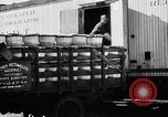 Image of 1930's produce deliveries to Washington DC United States USA, 1932, second 10 stock footage video 65675036980