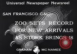 Image of infant cubs San Francisco California USA, 1933, second 7 stock footage video 65675037110