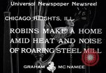 Image of Robin's nest Chicago Heights Illinois USA, 1933, second 2 stock footage video 65675037114
