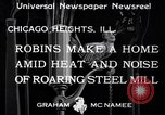 Image of Robin's nest Chicago Heights Illinois USA, 1933, second 3 stock footage video 65675037114