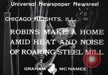 Image of Robin's nest Chicago Heights Illinois USA, 1933, second 8 stock footage video 65675037114