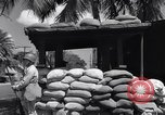 Image of office of Admiral Harold Stark Honolulu Hawaii USA, 1942, second 11 stock footage video 65675037116
