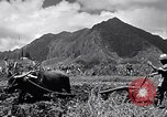 Image of plowing a field with water buffalo Honolulu Hawaii USA, 1942, second 4 stock footage video 65675037119
