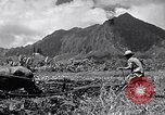 Image of plowing a field with water buffalo Honolulu Hawaii USA, 1942, second 10 stock footage video 65675037119