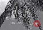 Image of Scenes before World War II in the Pacific Honolulu Hawaii USA, 1939, second 10 stock footage video 65675037129
