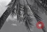 Image of Scenes before World War II in the Pacific Honolulu Hawaii USA, 1939, second 11 stock footage video 65675037129