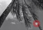 Image of Scenes before World War II in the Pacific Honolulu Hawaii USA, 1939, second 12 stock footage video 65675037129