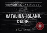 Image of Annual Aquaplane Derby Catalina Island California USA, 1938, second 4 stock footage video 65675037139