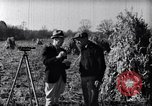 Image of Terraced farming United States USA, 1939, second 2 stock footage video 65675037169