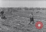 Image of terrace farming United States USA, 1939, second 4 stock footage video 65675037170