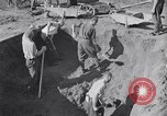 Image of Exhumation of Czech patriots Czechoslovakia, 1946, second 8 stock footage video 65675037198