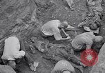 Image of Exhumation of Czech patriots Czechoslovakia, 1946, second 10 stock footage video 65675037198