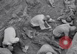 Image of Exhumation of Czech patriots Czechoslovakia, 1946, second 11 stock footage video 65675037198