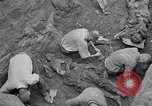 Image of Exhumation of Czech patriots Czechoslovakia, 1946, second 12 stock footage video 65675037198