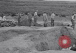 Image of Exhumation of Czech patriots Czechoslovakia, 1946, second 7 stock footage video 65675037199