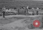 Image of Exhumation of Czech patriots Czechoslovakia, 1946, second 8 stock footage video 65675037199