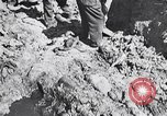 Image of Exhumation of Czech patriots Czechoslovakia, 1946, second 3 stock footage video 65675037200