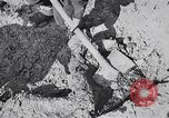 Image of Exhumation of Czech patriots Czechoslovakia, 1946, second 8 stock footage video 65675037200