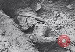 Image of Exhumation of Czech patriots Czechoslovakia, 1946, second 9 stock footage video 65675037200