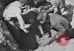 Image of Exhumation of Czech patriots Czechoslovakia, 1946, second 12 stock footage video 65675037200