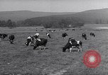 Image of men buy wheat Frankfurt Germany, 1946, second 8 stock footage video 65675037249