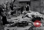Image of concentration and death camp Mauthausen Austria, 1945, second 4 stock footage video 65675037255