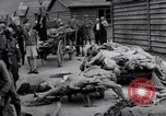 Image of concentration and death camp Mauthausen Austria, 1945, second 7 stock footage video 65675037255
