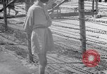 Image of concentration and death camp Mauthausen Austria, 1945, second 10 stock footage video 65675037256