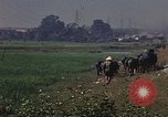 Image of heavy traffic in markets Vietnam, 1967, second 4 stock footage video 65675037262