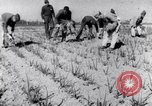 Image of Allied prisoners work at Japanese prison camp Pacific theater, 1941, second 10 stock footage video 65675037309