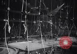 Image of circus benefit for New York Heart Fund New York City USA, 1951, second 7 stock footage video 65675037432