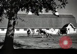 Image of horses United States USA, 1945, second 10 stock footage video 65675037434