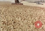 Image of Pesticides United States USA, 1963, second 5 stock footage video 65675037481