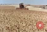 Image of Pesticides United States USA, 1963, second 7 stock footage video 65675037481