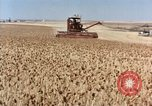 Image of Pesticides United States USA, 1963, second 8 stock footage video 65675037481