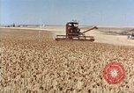 Image of Pesticides United States USA, 1963, second 10 stock footage video 65675037481
