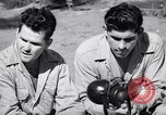 Image of Former American prisoners of Japanese interviewed Morotai Island, 1945, second 1 stock footage video 65675037627