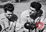 Image of Former American prisoners of Japanese interviewed Morotai Island, 1945, second 6 stock footage video 65675037627