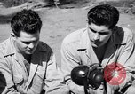 Image of Former American prisoners of Japanese interviewed Morotai Island, 1945, second 8 stock footage video 65675037627