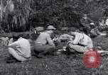 Image of L-5 Shingbwiyang Burma, 1945, second 7 stock footage video 65675037635