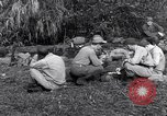 Image of L-5 Shingbwiyang Burma, 1945, second 8 stock footage video 65675037635