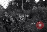 Image of L-5 Shingbwiyang Burma, 1945, second 12 stock footage video 65675037635