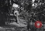 Image of Captain R D Underwood Shingbwiyang Burma, 1945, second 6 stock footage video 65675037637