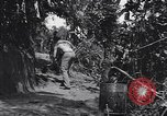 Image of Captain R D Underwood Shingbwiyang Burma, 1945, second 7 stock footage video 65675037637