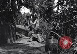 Image of Captain R D Underwood Shingbwiyang Burma, 1945, second 8 stock footage video 65675037637