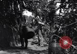Image of Captain R D Underwood Shingbwiyang Burma, 1945, second 11 stock footage video 65675037637