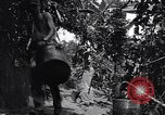 Image of Captain R D Underwood Shingbwiyang Burma, 1945, second 12 stock footage video 65675037637