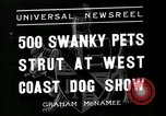 Image of annual dog show Santa Cruz California USA, 1936, second 2 stock footage video 65675037654
