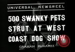 Image of annual dog show Santa Cruz California USA, 1936, second 3 stock footage video 65675037654